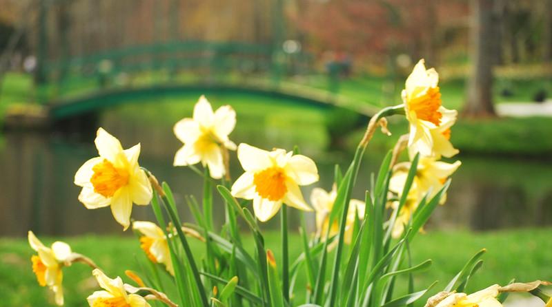 gibbs gardens georgia