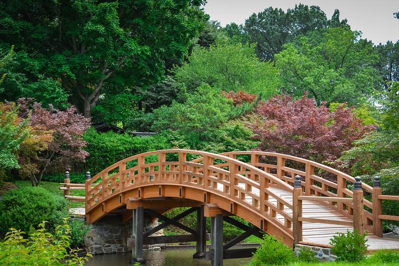 japanese garden lake